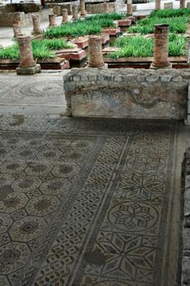 floor-and-garden-2